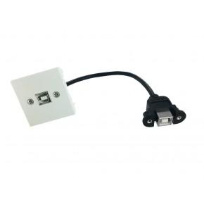 Plastron 45x45 USB B F vers F - 0,20m
